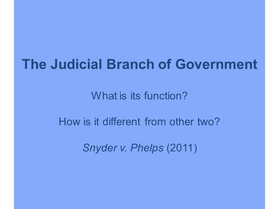 The Judicial Branch of Government What is its function