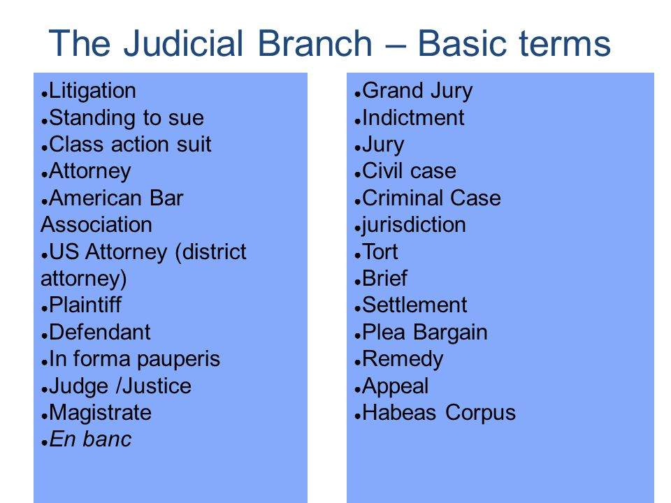 The Judicial Branch – Basic terms
