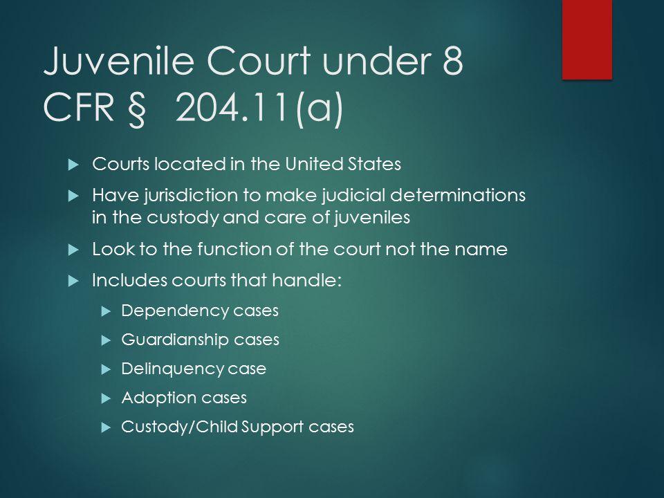 Juvenile Court under 8 CFR § 204.11(a)