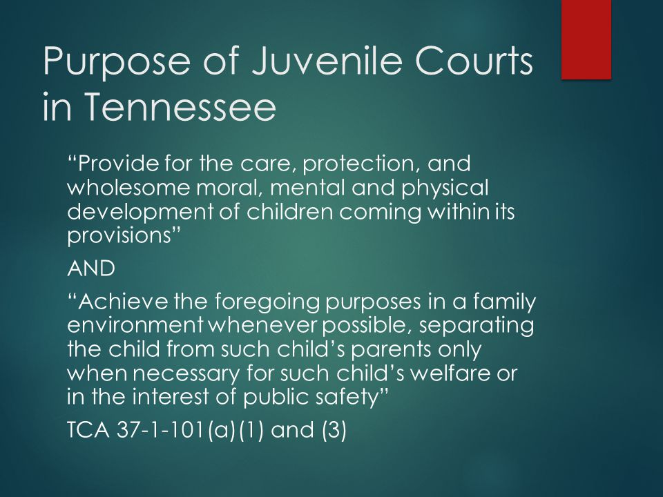 Purpose of Juvenile Courts in Tennessee