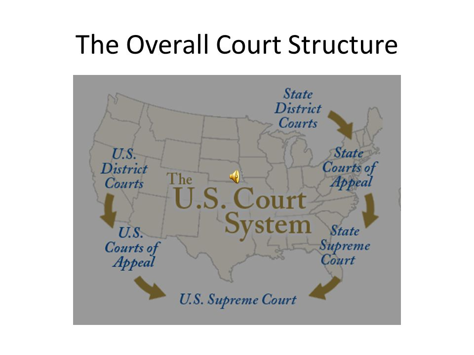 The Overall Court Structure
