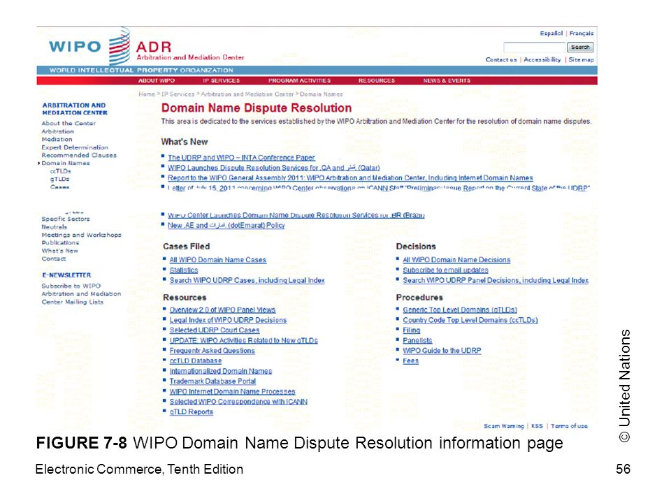 FIGURE 7-8 WIPO Domain Name Dispute Resolution information page