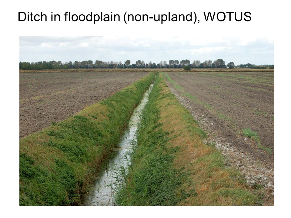 Ditch in floodplain (non-upland), WOTUS