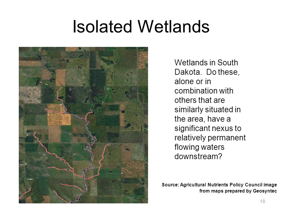 Isolated Wetlands