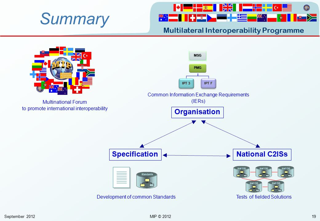 Summary Organisation Specification National C2ISs Unclassified