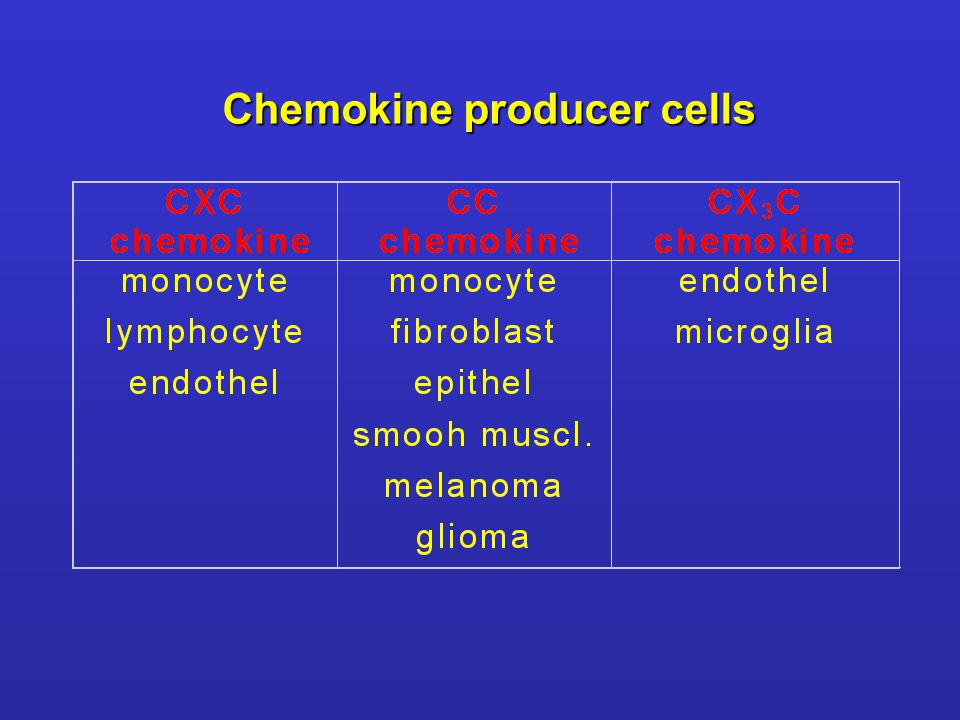 Chemokine producer cells