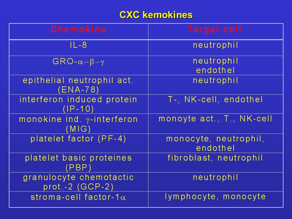 CXC kemokines