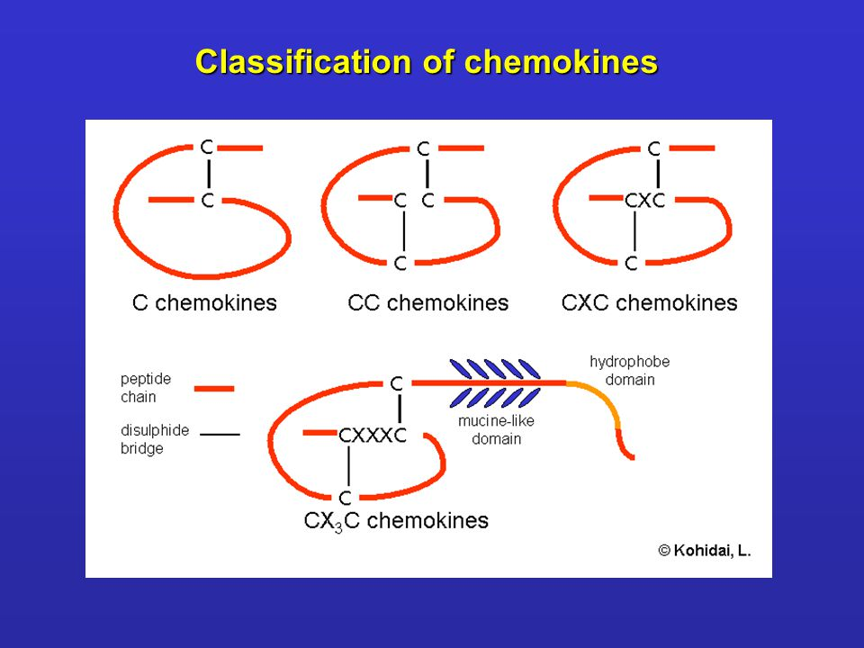 Classification of chemokines