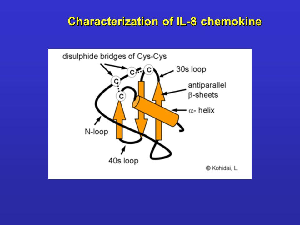 Characterization of IL-8 chemokine