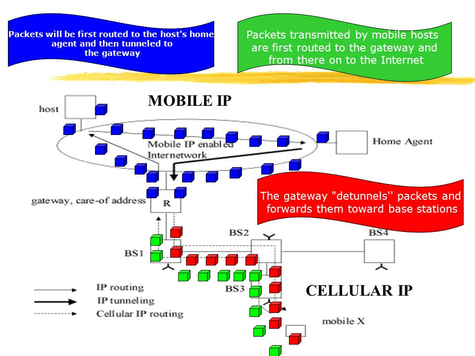 MOBILE IP CELLULAR IP Packets transmitted by mobile hosts