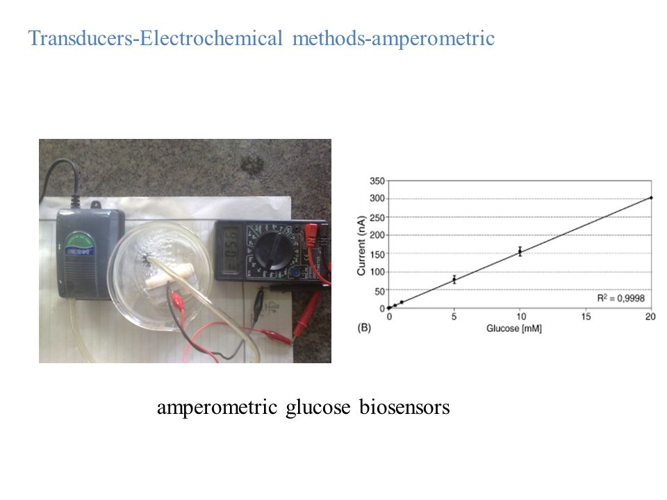 amperometric glucose biosensors