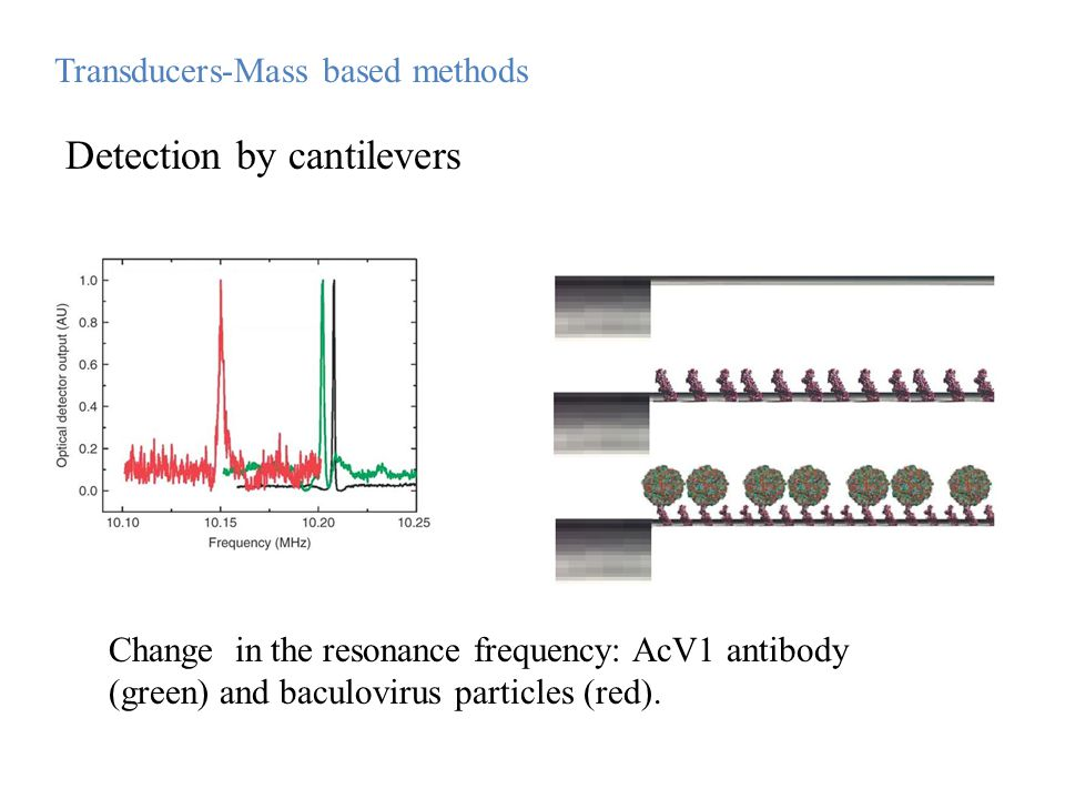 Detection by cantilevers