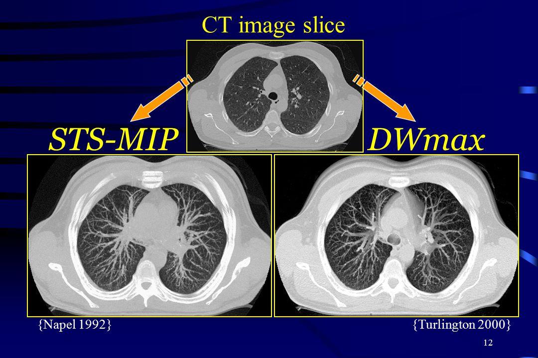 STS-MIP DWmax CT image slice {Napel 1992} {Turlington 2000}