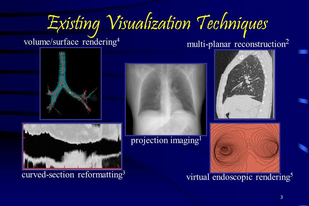 Existing Visualization Techniques