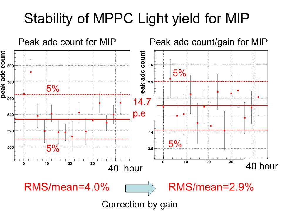 Stability of MPPC Light yield for MIP