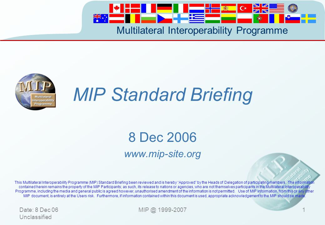 MIP Standard Briefing 8 December 2006 8 Dec 2006 www.mip-site.org