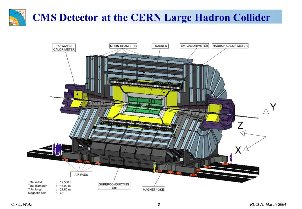 CMS Detector at the CERN Large Hadron Collider