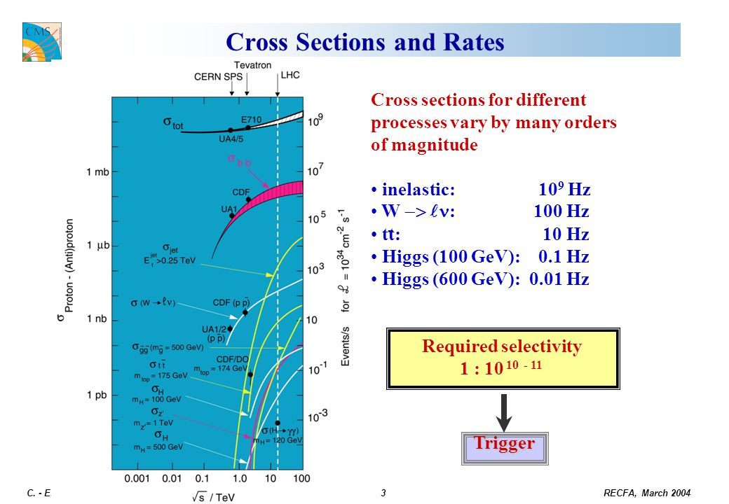 Cross Sections and Rates