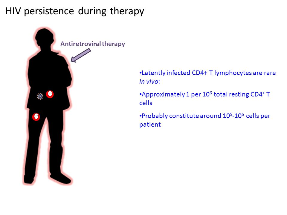 HIV persistence during therapy