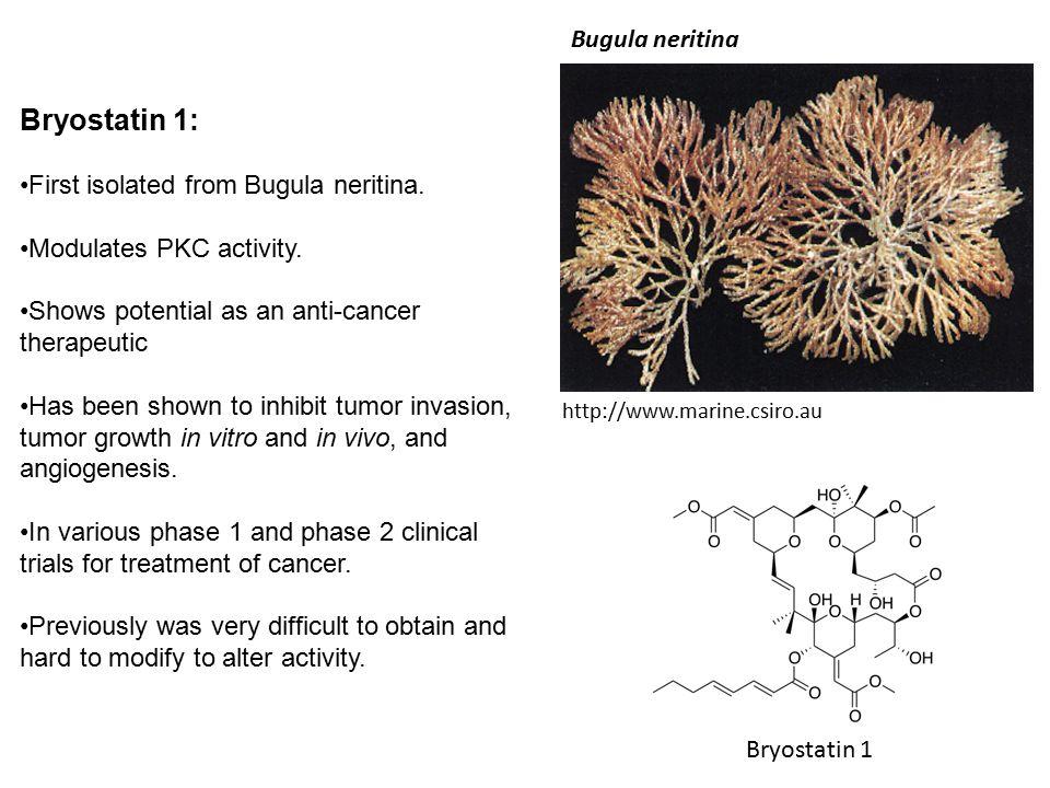 Bryostatin 1: Bugula neritina First isolated from Bugula neritina.
