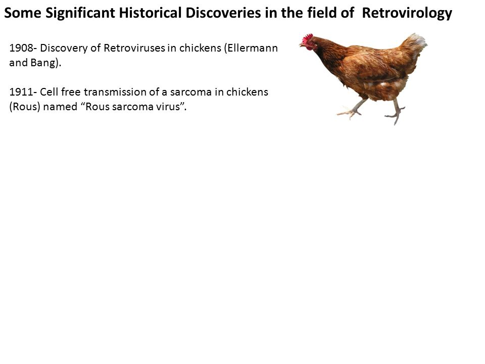 Some Significant Historical Discoveries in the field of Retrovirology