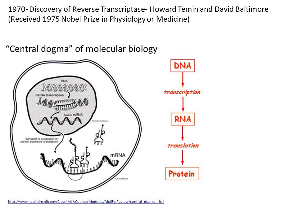 Central dogma of molecular biology