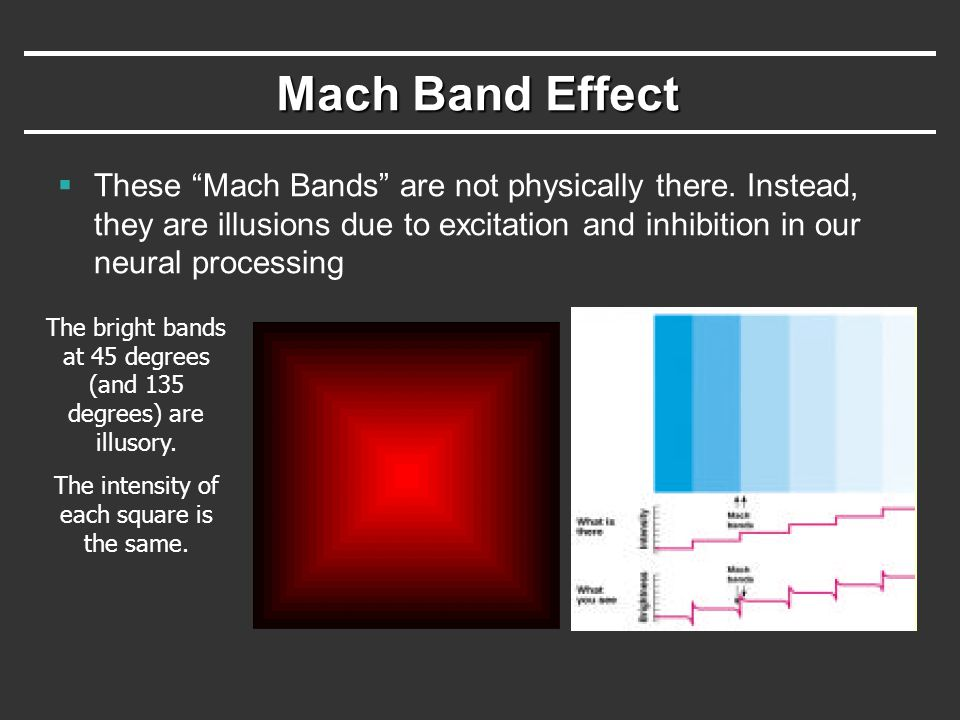 Mach Band Effect These Mach Bands are not physically there. Instead, they are illusions due to excitation and inhibition in our neural processing.