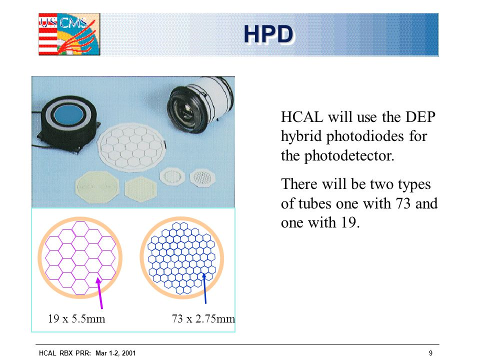 HPD HCAL will use the DEP hybrid photodiodes for the photodetector.