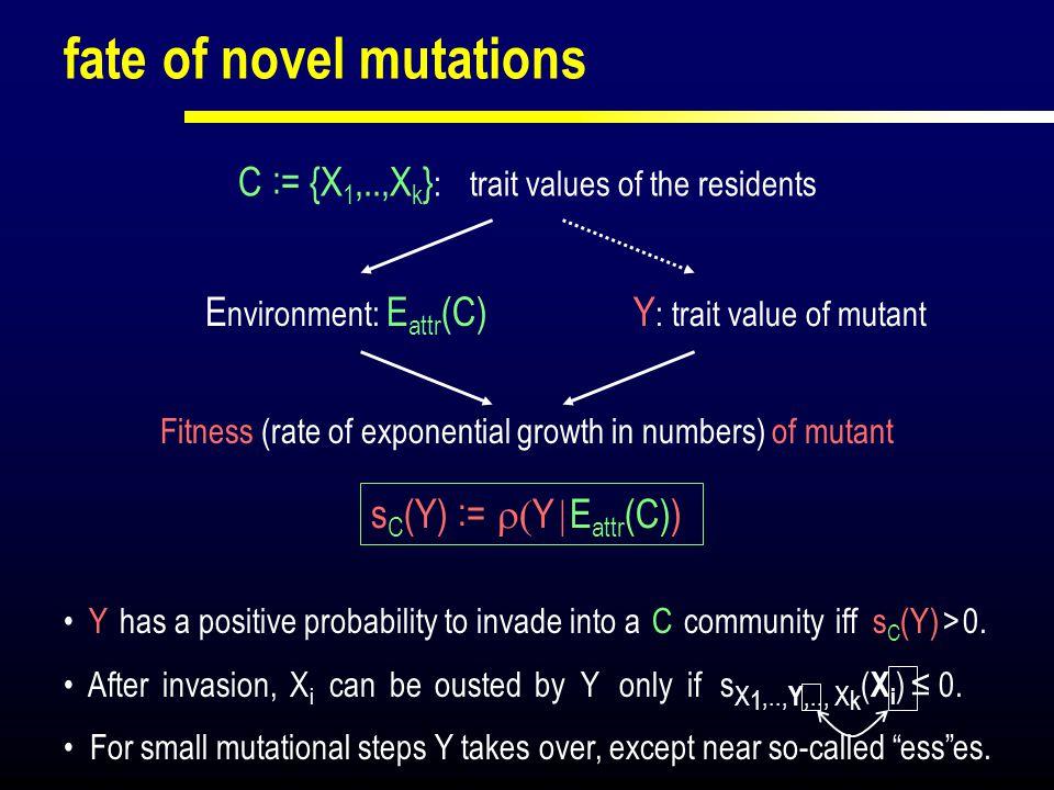fate of novel mutations