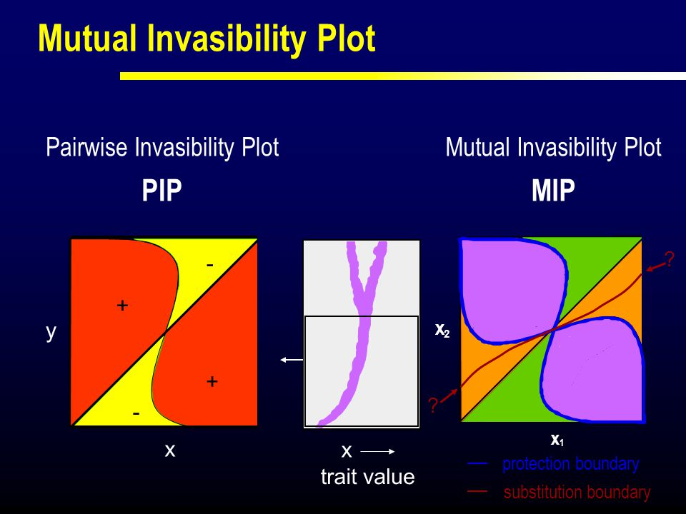 Mutual Invasibility Plot