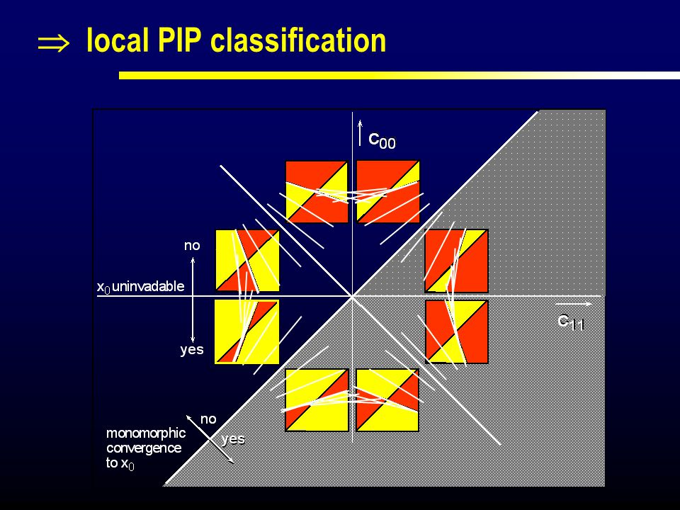  local PIP classification