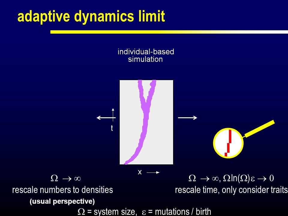 adaptive dynamics limit