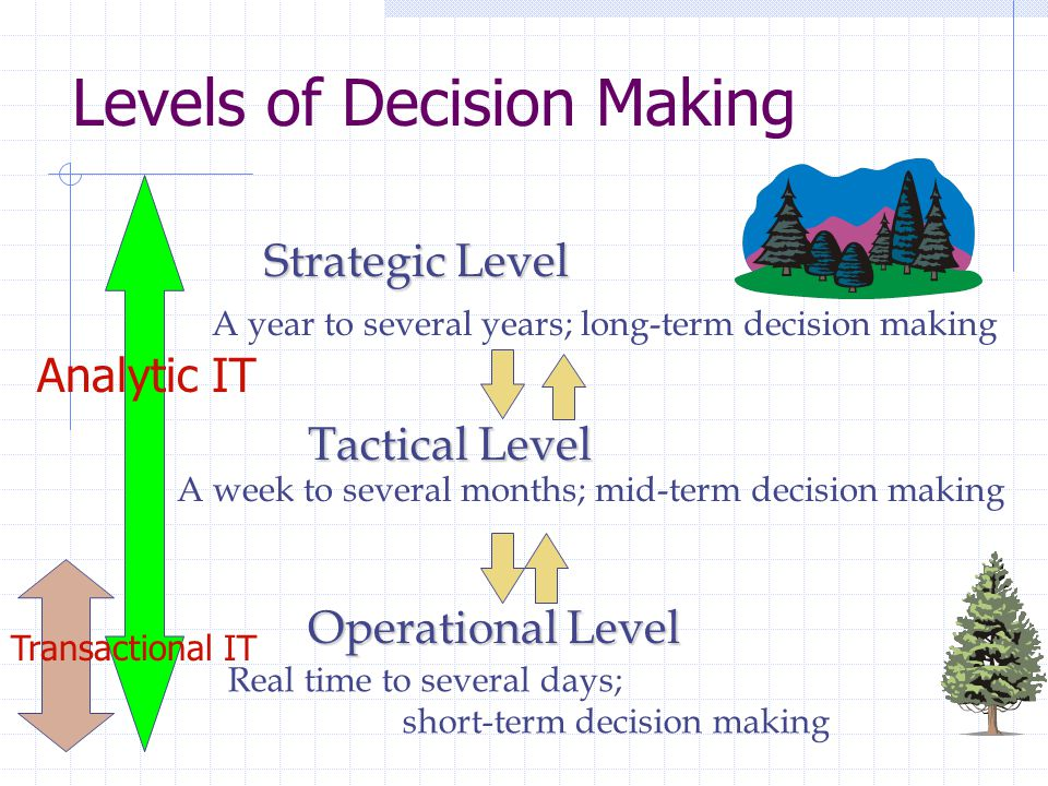 Levels of Decision Making