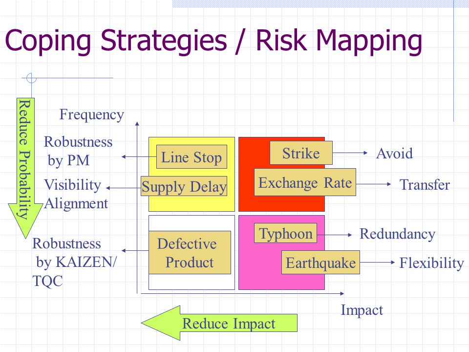 Coping Strategies / Risk Mapping
