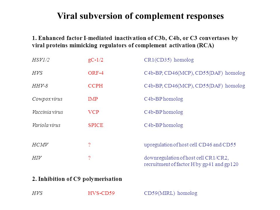 Viral subversion of complement responses
