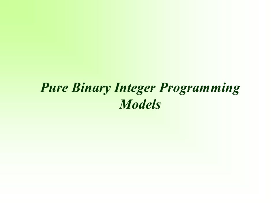 Pure Binary Integer Programming Models