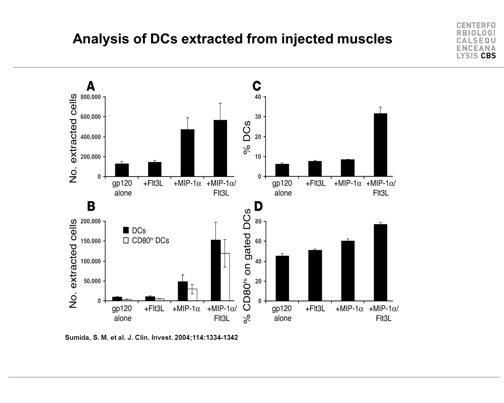 Analysis of DCs extracted from injected muscles