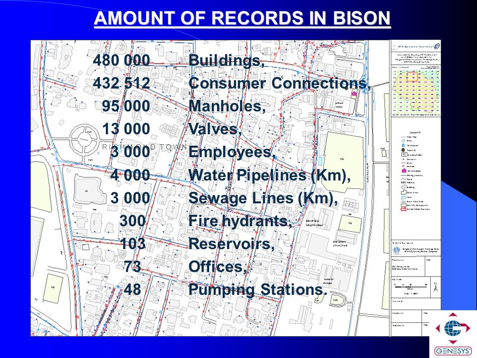 AMOUNT OF RECORDS IN BISON