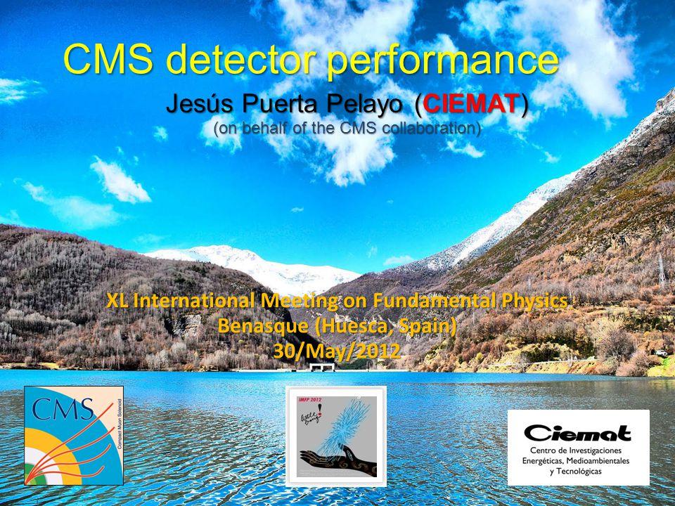 CMS detector performance