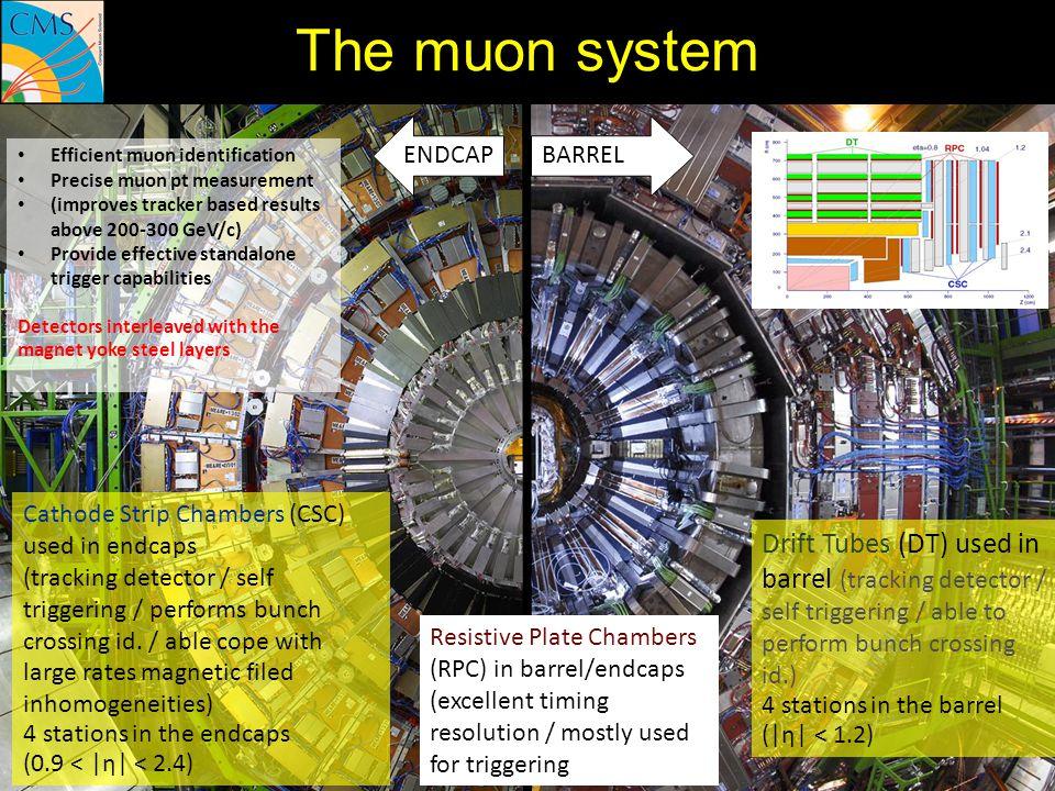 The muon system ENDCAP. BARREL. Efficient muon identification. Precise muon pt measurement. (improves tracker based results above 200-300 GeV/c)