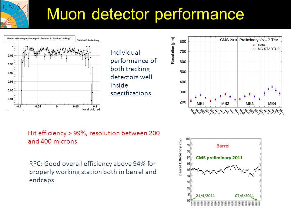 Muon detector performance