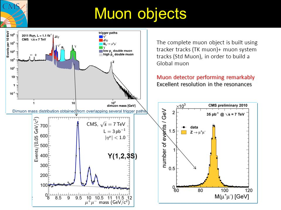 Muon objects The complete muon object is built using tracker tracks (TK muon)+ muon system tracks (Std Muon), in order to build a Global muon.