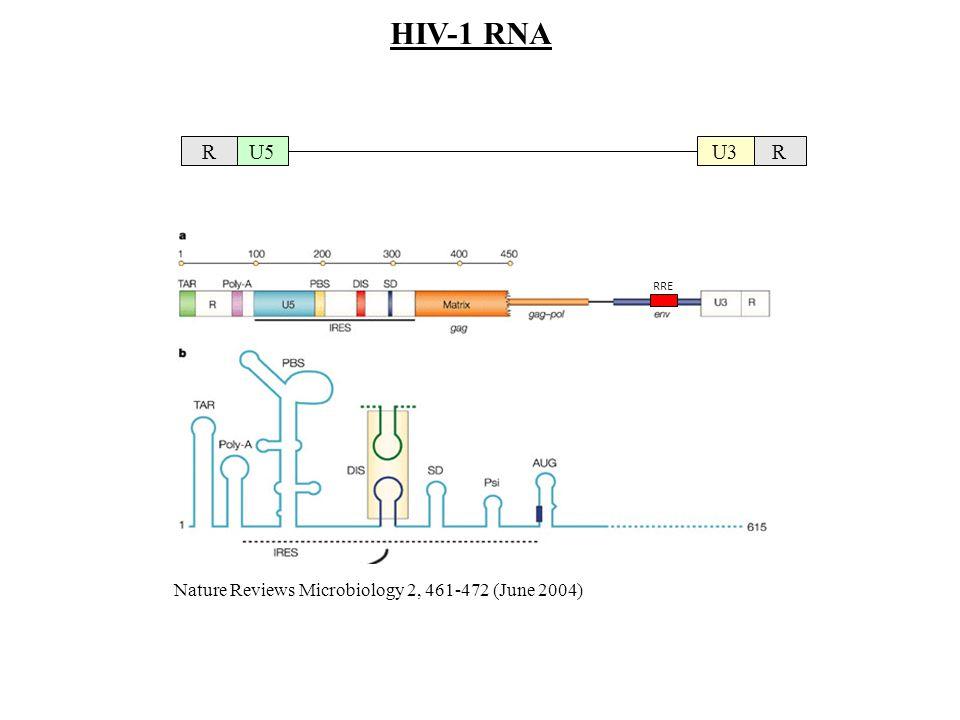 HIV-1 RNA R U5 U3 Nature Reviews Microbiology 2, 461-472 (June 2004)