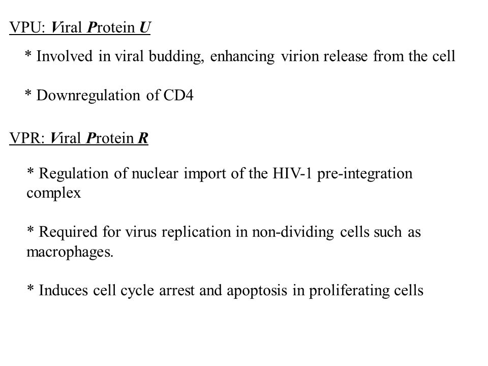 VPU: Viral Protein U * Involved in viral budding, enhancing virion release from the cell. * Downregulation of CD4.