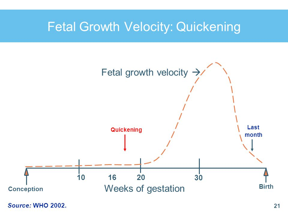 Fetal Growth Velocity: Quickening