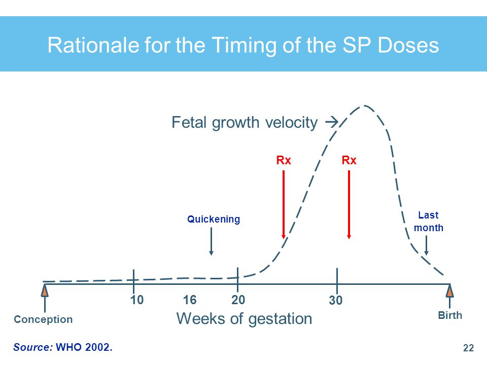 Rationale for the Timing of the SP Doses