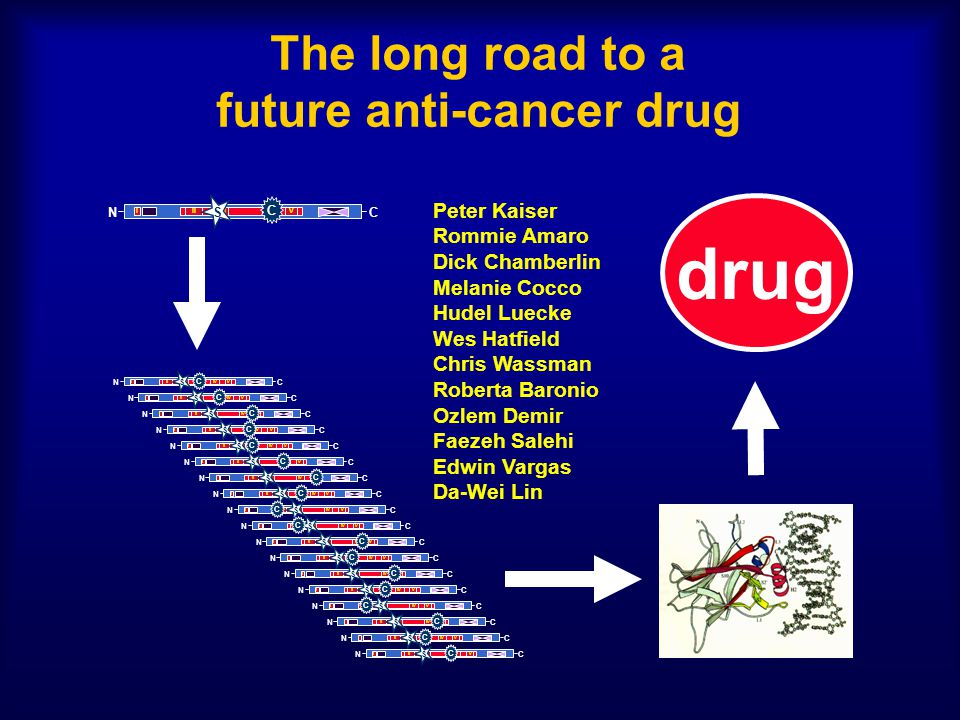 The long road to a future anti-cancer drug