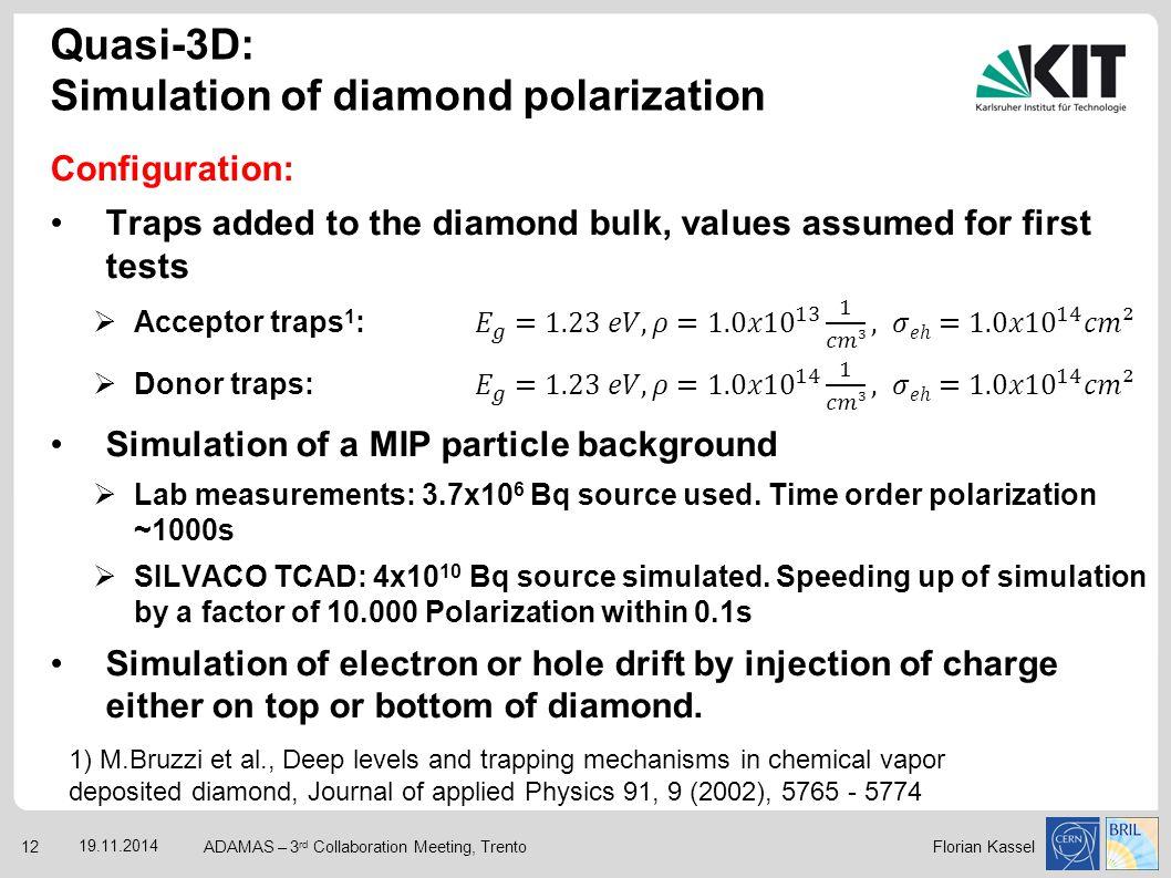 Quasi-3D: Simulation of diamond polarization