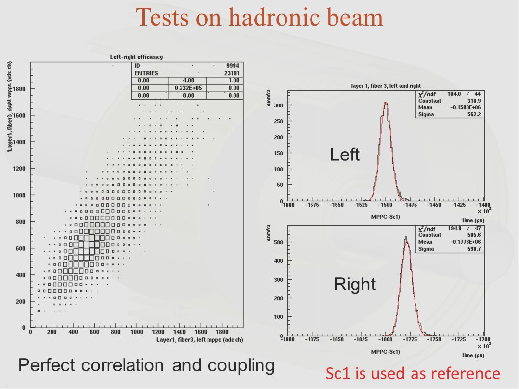 Tests on hadronic beam Left Right Perfect correlation and coupling