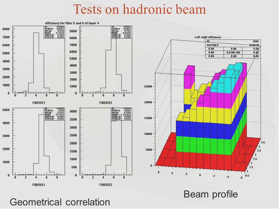 Tests on hadronic beam Beam profile Geometrical correlation